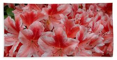 Simply Azaleas Beach Sheet