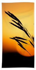 Simply Natural Beach Towel by Penny Meyers