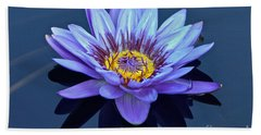 Single Lavender Water Lily Beach Towel