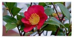 Single Petal Red Camellia Flowers Art Print Beach Sheet