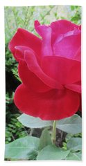 Single Red Rose Beach Towel