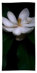 Sweet White Magnolia Bloom Beach Sheet