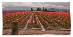 Beach Towel featuring the photograph Skagit Valley Tulip Farmlands In Spring Storm Art Prints by Valerie Garner