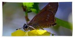 Skipper Butterfly Beach Towel by Debra Martz
