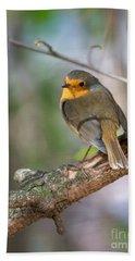 Small Bird Robin Beach Towel