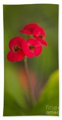 Small Red Flowers With Blurry Background Beach Sheet