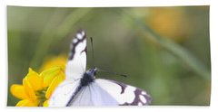 Beach Towel featuring the photograph Small White Butterfly On Yellow Flower by Belinda Greb