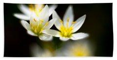 Small White Flowers Beach Sheet