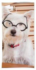 Smart Doggie Beach Towel by Edward Fielding