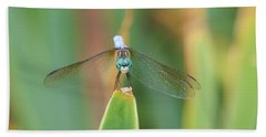 Smiling Dragonfly Beach Towel by Karen Silvestri
