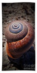 Beach Towel featuring the photograph Snail Beauty by Clare Bevan