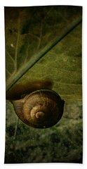 Snail Camp Beach Towel by Barbara Orenya