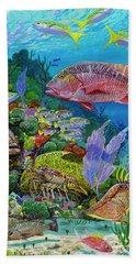 Snapper Reef Re0028 Beach Towel
