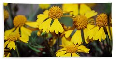 Sneezeweed Beach Towel by Ester  Rogers