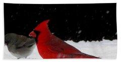 Snow Birds Beach Sheet