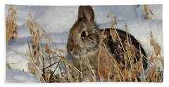 Snow Bunny Beach Towel by Penny Meyers