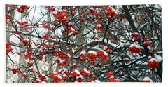 Snow- Capped Mountain Ash Berries Beach Towel by Will Borden