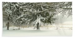 Snow-covered Trees Beach Towel