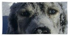 Snow Dog Beach Towel