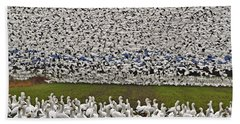 Beach Sheet featuring the photograph Snow Geese By The Thousands by Valerie Garner