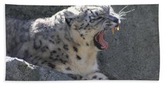 Beach Towel featuring the photograph Snow Leopard Yawn by Neal Eslinger
