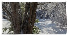 Snow Sparkles Beach Towel