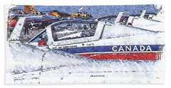 Snowbirds Beach Towel