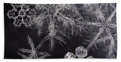 Snowflakes Beach Sheet by Eunice Gibb