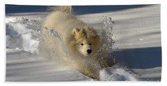 Snowplow Beach Sheet