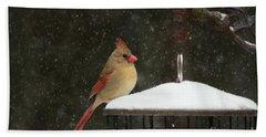 Snowy Cardinal Beach Towel