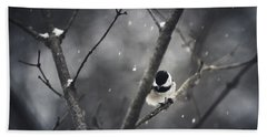 Snowy Chickadee Beach Sheet by Shane Holsclaw
