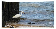 Snowy Egret At The Shore Beach Towel