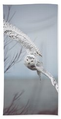 Snowy Owl In Flight Beach Towel by Carrie Ann Grippo-Pike