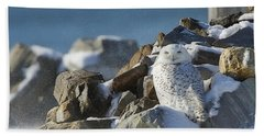 Snowy Owl On A Rock Pile Beach Sheet
