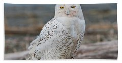 Snowy Owl Watching From A Driftwood Perch Beach Sheet