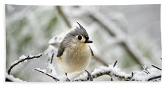 Snowy Tufted Titmouse Beach Towel by Christina Rollo