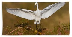Beach Sheet featuring the photograph Snowy Wingspread by Bryan Keil