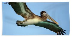 Beach Sheet featuring the photograph Soaring Pelican by Suzanne Stout