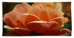 Beach Sheet featuring the photograph Soft Orange Flower by Matt Harang