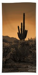 Solitary Saguaro Beach Sheet by Deb Halloran