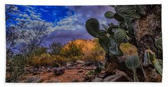 Beach Towel featuring the photograph Sonoran Desert 54 by Mark Myhaver