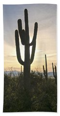Sonoran Desert View Beach Towel