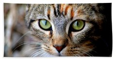 Beach Towel featuring the photograph Soul Cat by Deena Stoddard