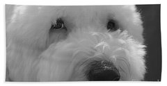 Soulful Eye's Old English Sheep Dog Beach Towel by Peggy Franz
