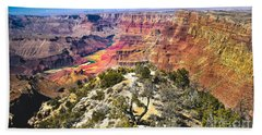 South Rim From The Butte Beach Towel by Robert Bales