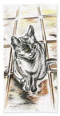 Spanish Cat Waiting Beach Towel