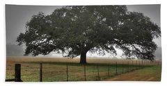 Beach Sheet featuring the photograph Spanish Oak I by Lanita Williams
