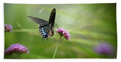 Spicebush Swallowtail Butterfly Beach Sheet