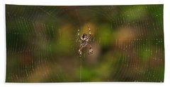 Spider Web Beach Sheet