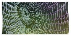 Spider Web Beach Sheet by Heiko Koehrer-Wagner